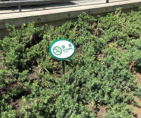 植栽用禁煙サイン